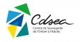 CDSEA 91 - SAIS