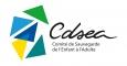 CDSEA 91